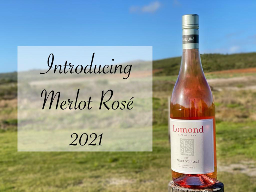 Introducing Merlot Rosé 2021
